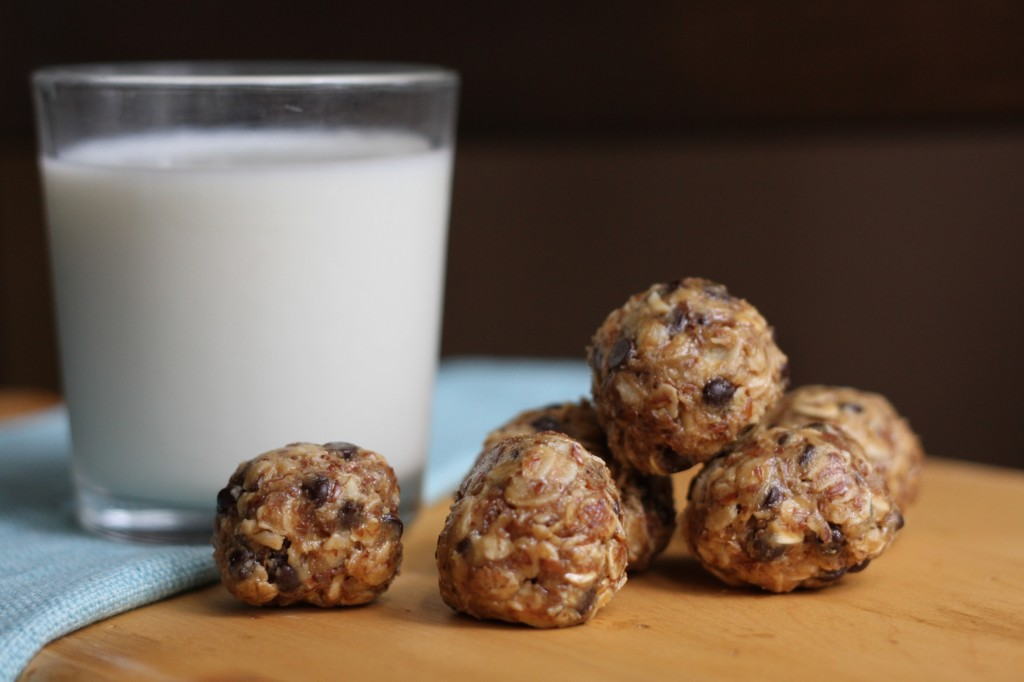 Gluten-Free Honey Oat Protein Bites | Brittany's Pantry